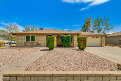 Tempe Single Family Home For Sale: 1007 E Carmen Street