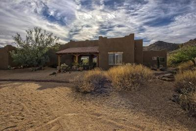 Cave Creek Single Family Home For Sale: 40522 N 50th Street