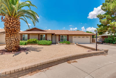 Phoenix Single Family Home For Sale: 3232 W Ironwood Drive