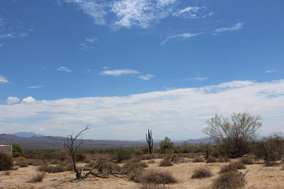 Rio Verde Residential Lots & Land For Sale: 17500 E Cascalote Drive