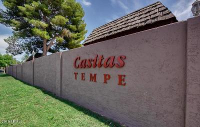 Tempe Condo/Townhouse UCB (Under Contract-Backups): 820 S Hacienda Drive #A