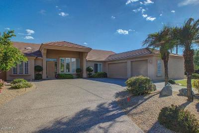Scottsdale Single Family Home For Sale: 9133 E Wethersfield Road