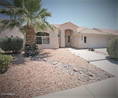 Tempe Single Family Home For Sale: 465 W Larona Lane