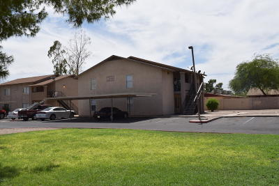 Mesa Multi Family Home For Sale: 260 8th Avenue #21