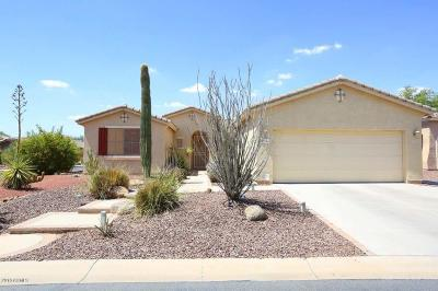 Maricopa Single Family Home For Sale: 42996 W Whimsical Drive