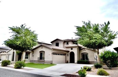 Surprise AZ Single Family Home For Sale: $324,500