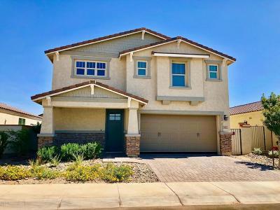 Eastmark Single Family Home For Sale: 9847 E Tungsten Drive