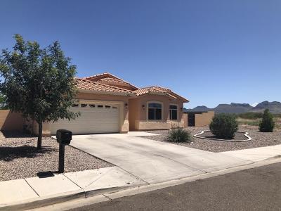 Douglas Single Family Home For Sale: 3032 E Old Palo Verde Drive