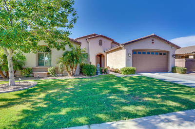 Chandler Single Family Home For Sale: 1164 E Grand Canyon Drive