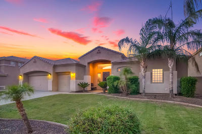 Phoenix Single Family Home For Sale: 5010 W Swayback Pass