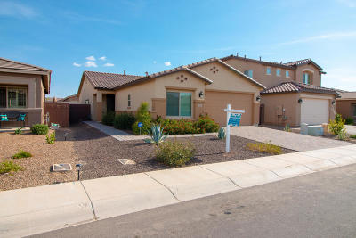 San Tan Valley Single Family Home For Sale: 499 W Evergreen Pear Avenue