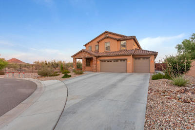 Peoria Single Family Home For Sale: 7825 W Fetlock Trail