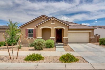 Queen Creek Single Family Home For Sale: 22441 E Via Del Verde