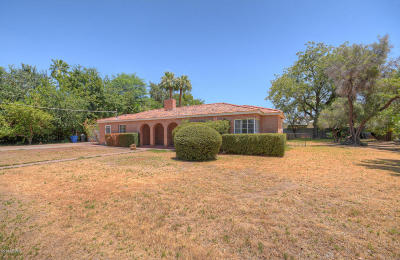 Phoenix Single Family Home For Sale: 6821 N 2nd Place