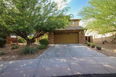 Surprise Single Family Home For Sale: 15292 W Post Drive
