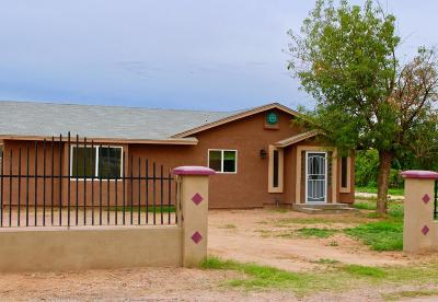 Gilbert Single Family Home For Sale: 1739 S 140th Place