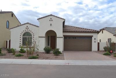 Chandler Single Family Home For Sale: 4137 E Glacier Place