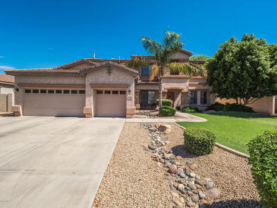 Gilbert Single Family Home For Sale: 316 E Benrich Drive