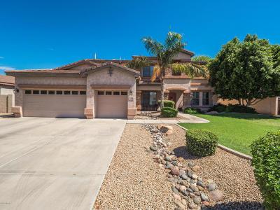 Gilbert AZ Single Family Home For Sale: $480,000