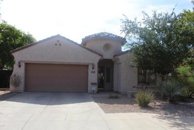 Mesa Single Family Home For Sale: 4664 S Hassett