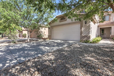 San Tan Valley Single Family Home For Sale: 1314 E Press Place