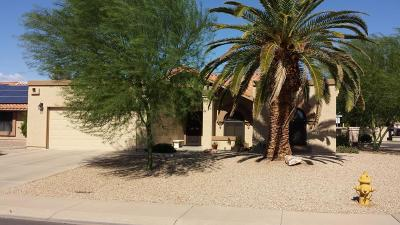 Buckeye, Goodyear, Peoria, Sun City, Sun City West, Surprise Single Family Home For Sale: 19231 N 92nd Avenue