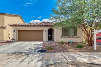 Tolleson Single Family Home For Sale: 10145 W Marguerite Avenue