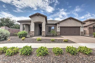 Gilbert Single Family Home For Sale: 3063 E Baars Avenue