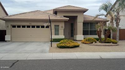 Peoria Single Family Home For Sale: 9044 W Tonopah Drive