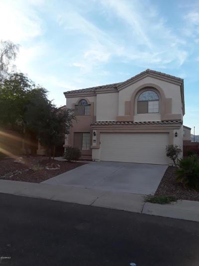 Buckeye Single Family Home For Sale: 23950 W Tonto Street