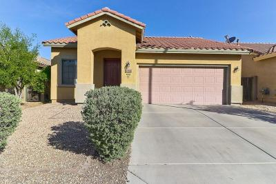 Anthem Single Family Home For Sale: 43244 N Heavenly Way