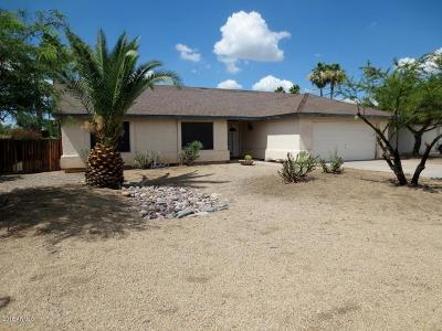 Tempe Single Family Home For Sale: 2004 E Rice Drive