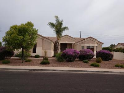 Mesa Single Family Home For Sale: 3133 E Greenway Street