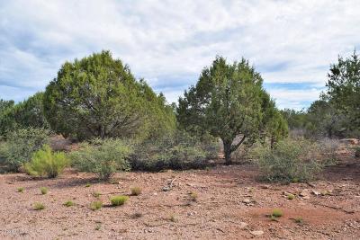Residential Lots & Land For Sale: 1213 N Earhart Parkway