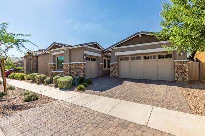Mesa Single Family Home For Sale: 10144 E Stealth Avenue