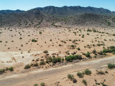 Residential Lots & Land For Sale: 8704 S Lamb Road