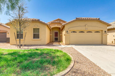 Maricopa Single Family Home For Sale: 46023 W Morning View Lane