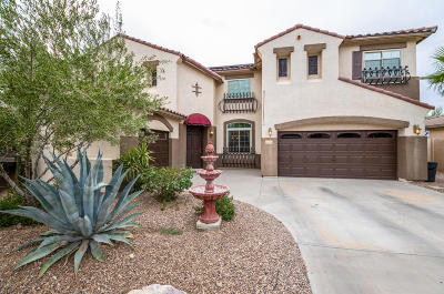 Queen Creek Single Family Home For Sale: 18454 E Pine Valley Drive