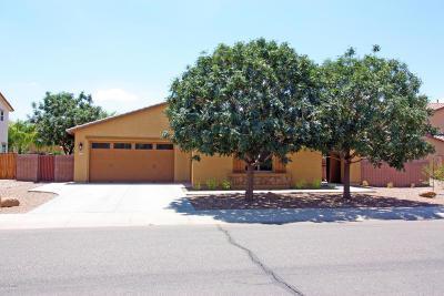 Gilbert Single Family Home For Sale: 2743 E Carob Drive