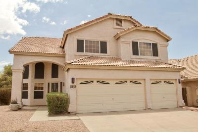 Phoenix Single Family Home For Sale: 1333 E Silverwood Drive