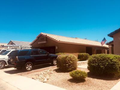 Phoenix AZ Single Family Home For Sale: $255,000