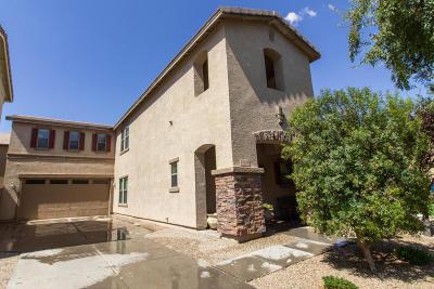 Chandler, Gilbert, Mesa, Queen Creek, San Tan Valley, Scottsdale, Tempe Single Family Home For Sale: 21128 E Munoz Street