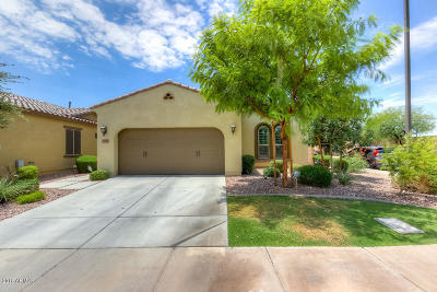 Chandler Single Family Home For Sale: 3522 S Washington Street