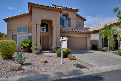 Phoenix Single Family Home For Sale: 1309 E Sheena Drive