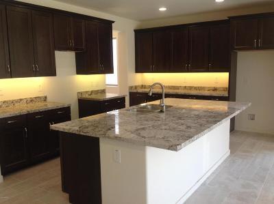 Mesa Single Family Home For Sale: 3011 E Quenton Street