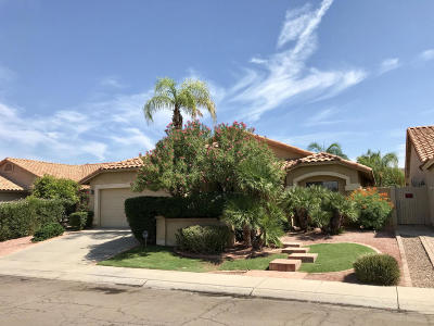 Phoenix Single Family Home For Sale: 2540 E Taxidea Way