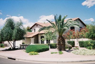 Tempe Single Family Home For Sale: 452 E Lilac Drive