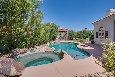 Single Family Home For Sale: 15038 E Marathon Drive