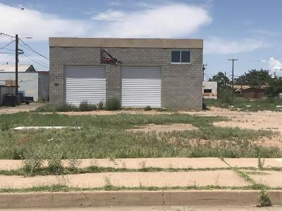 Douglas Commercial For Sale: 528 E 13th Street
