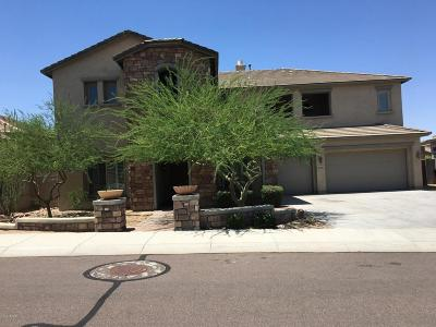 Single Family Home For Sale: 26886 N 90th Avenue